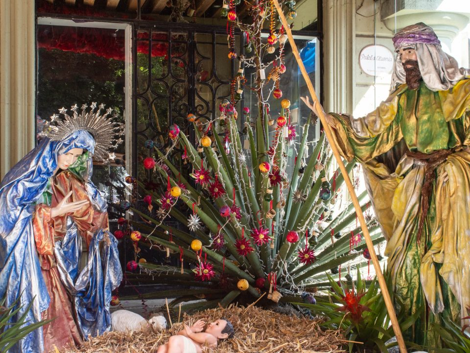 Creche scene with Christmas ornaments on agave plant