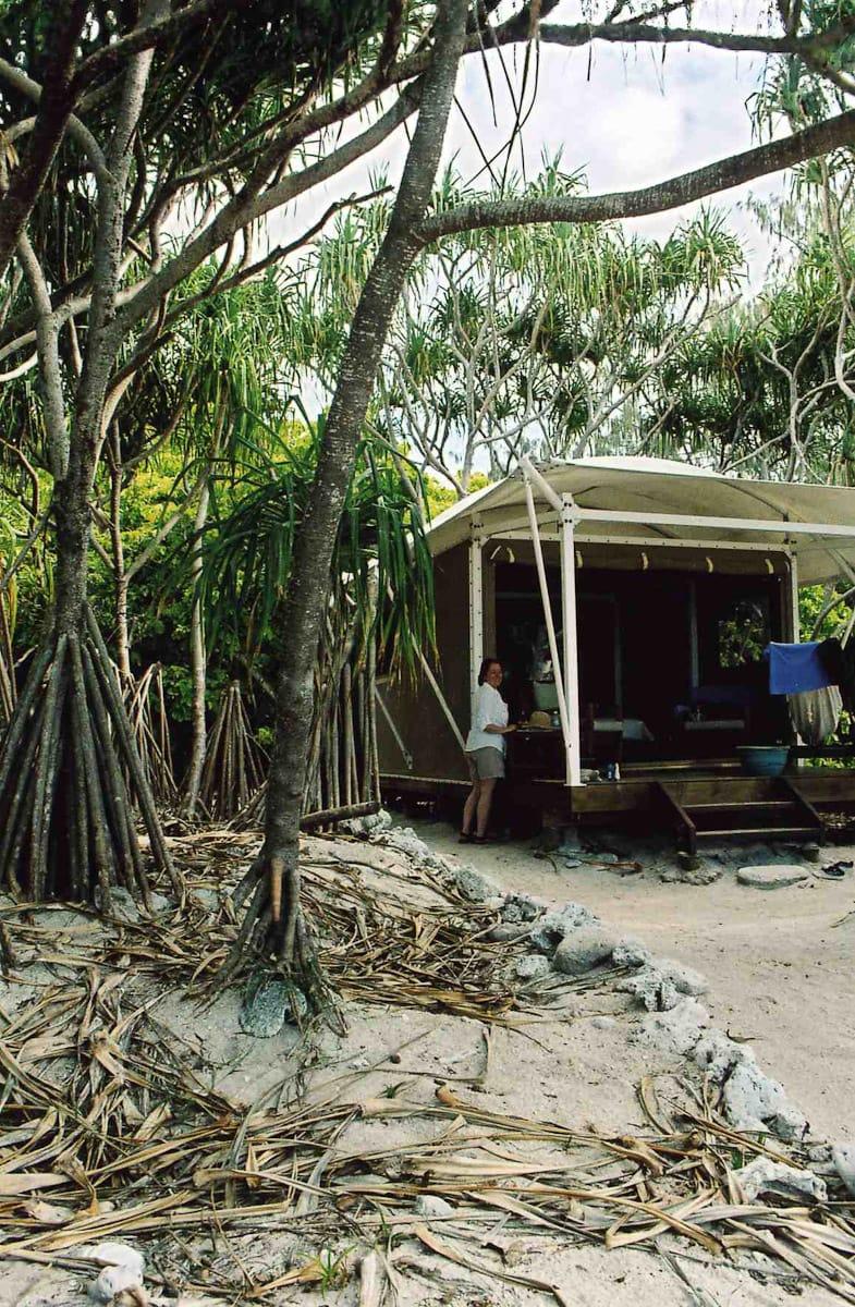 Luxury tent under trees